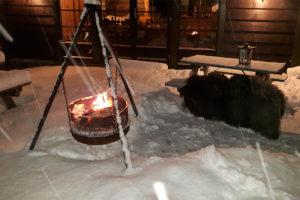 bjorketeigen gard vinter