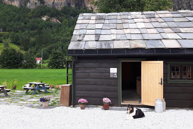 Bjørketeigen gard 21.08.2016 13-54-21